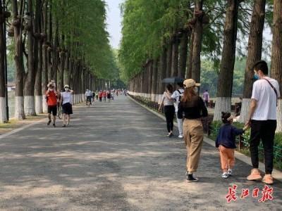 游人单循环登黄鹤楼、东湖边实时监测客流,武汉景区防疫服务让游客开心更放心