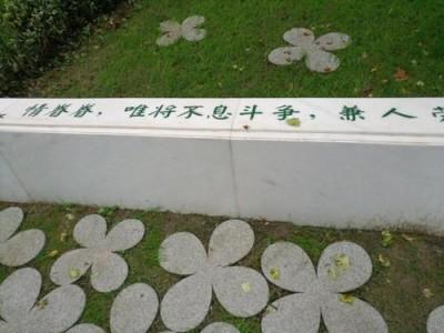 聚焦 武汉市新冠肺炎疫情动态(2020年5月3日)
