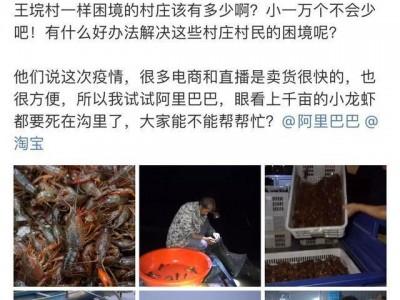 """阿里巴巴网为湖北省权威专家纾困,淘宝吃货疯抢开启""""夕阳红老年""""龙虾销售市场"""