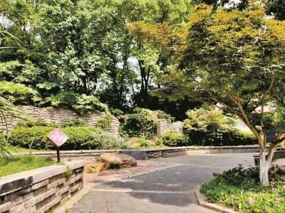 武昌区将建一批园林绿化游园会 无物业管理老旧小区改造可申请办理