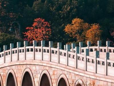 """摄影师的眼睛向你展示了各种各样的""""东湖桥"""""""