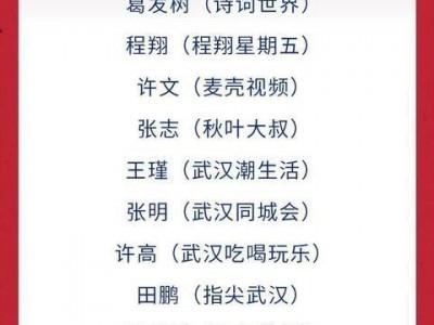 """30位互联网专家被授予""""武汉正能量网络V"""",用新鲜的作品向世界传达武汉的力量。"""