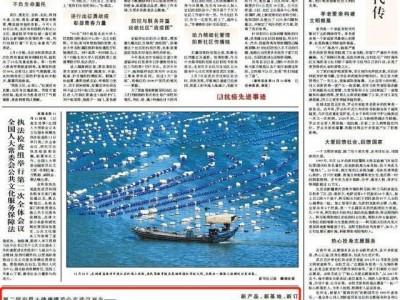 """""""健康武汉回来了"""",众多全国性媒体聚焦健康博览会。"""