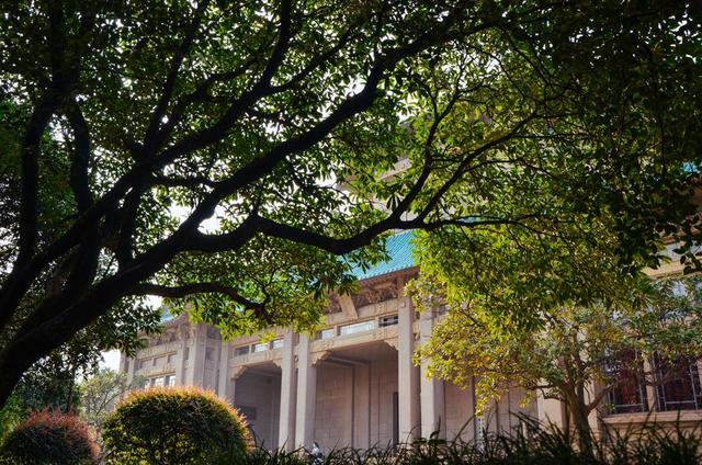 为什么学校都能成旅游景点?看看武汉大学就知道了! 第9张