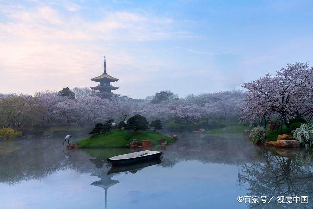 一年一度春风劲,武汉春天最相忆 第4张