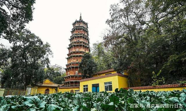 武汉旅行最好吃的蔬菜,竟出自千年皇家古寺,连慈禧都很喜爱 第5张