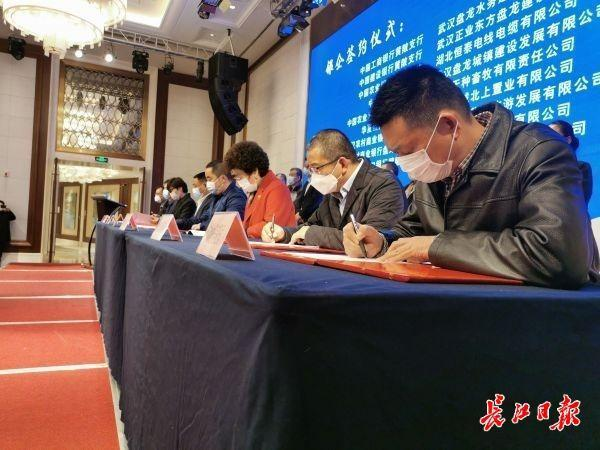 黄陂区银企对接现场签约超百亿元,全力支持企业复工复产 第1张