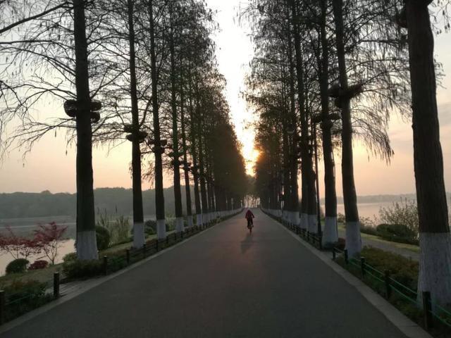这就是今天早上的武汉! 第20张