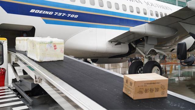 副省长为小龙虾、藕带送行,盒马包机助销湖北生鲜农产品 第4张