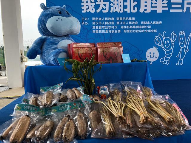 副省长为小龙虾、藕带送行,盒马包机助销湖北生鲜农产品 第6张