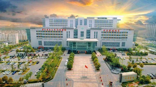 诊疗|同济医院中法新城分院5月14日起修复基本诊治 第2张