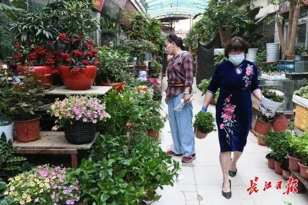 气温|礼拜天暧阳相随,武汉市最高温度抬升至30℃之上 第2张