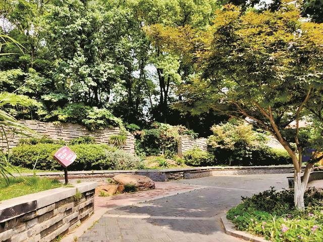 武昌区将建一批园林绿化游园会 无物业管理老旧小区改造可申请办理 第1张