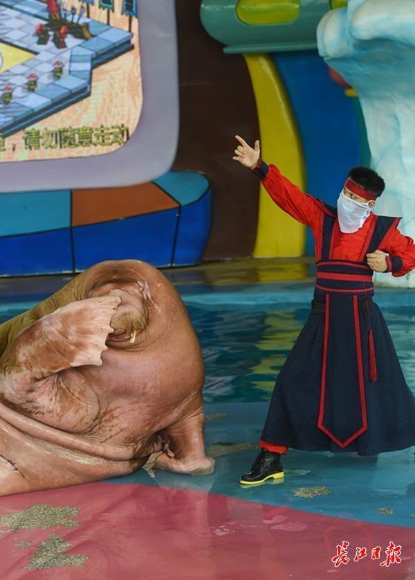 """当小木偶在海洋世界扇舞长袖上衣,云端剧院""""儿童游乐园·玩玩偶""""六一起动 第2张"""