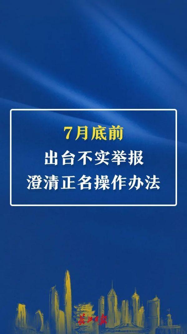 武汉市颁布重磅消息文档,向四风问题四风问题做手术! 第11张