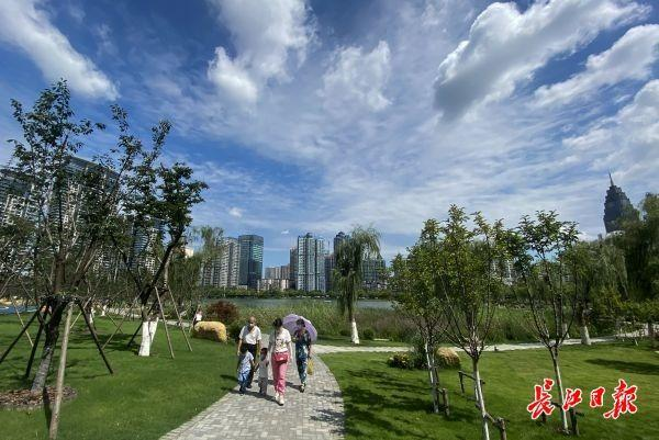 美上长空!武汉市蓝天白云草地刷屏微信朋友圈 第3张