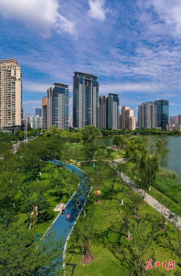 美上长空!武汉市蓝天白云草地刷屏微信朋友圈 第2张