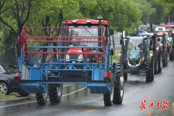 霸气侧漏!华中农大大学毕业生校内开拖拉机巡街 第1张