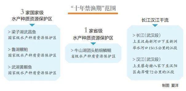 """果断贯彻落实""""禁渔令"""",武汉市长江下游关键海域范畴明确 第4张"""
