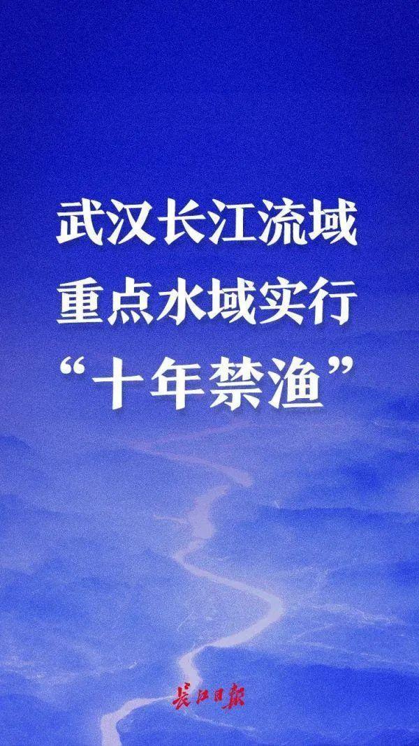 """果断贯彻落实""""禁渔令"""",武汉市长江下游关键海域范畴明确 第3张"""