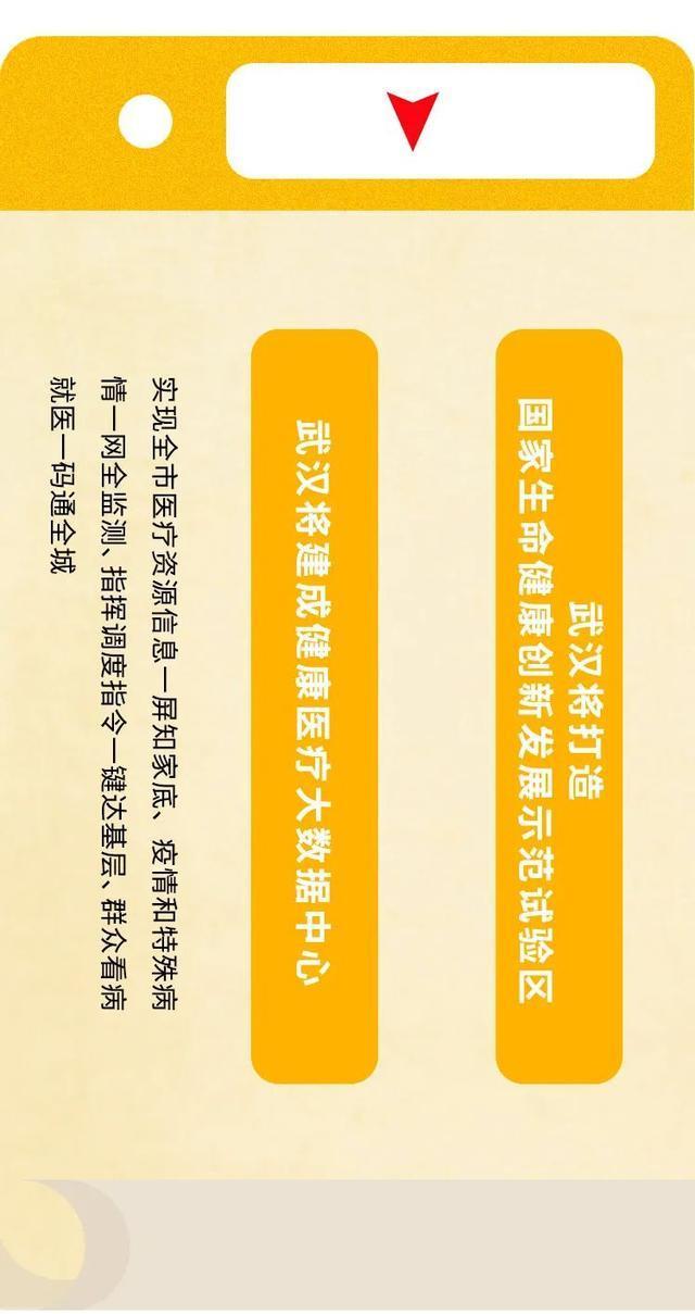 紧紧围绕提高解决重大疫情和突发性公共卫生服务恶性事件工作能力,武汉市要打造出我国榜样大城市 第19张