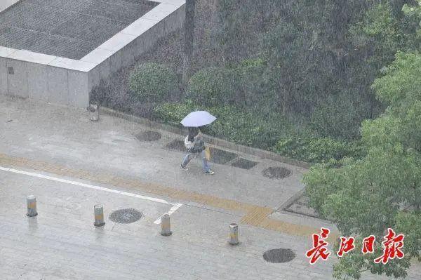 7月4日12时起,湘江水旱灾害防御力应急处置提高至Ⅲ级 第2张