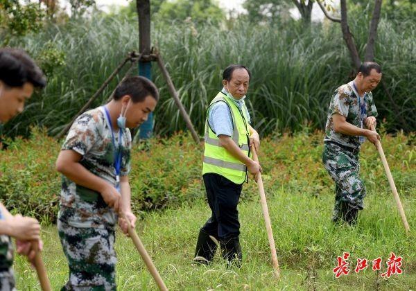 """汉阳80多名""""小区第一书记""""火线零线增援出任哨长 第1张"""