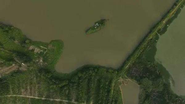 """关心 政府部门转让133亩商住用地调规为绿色生态绿化,大城市空出一片""""绿"""" 第4张"""