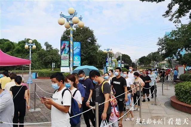 聚焦点|湖北省武汉景区免费参观当日人气值超旺!旅游景区服务项目防治抓牢 第18张