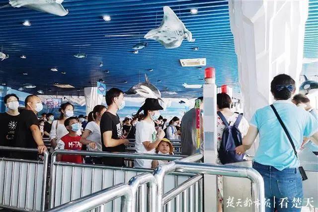 聚焦点|湖北省武汉景区免费参观当日人气值超旺!旅游景区服务项目防治抓牢 第25张
