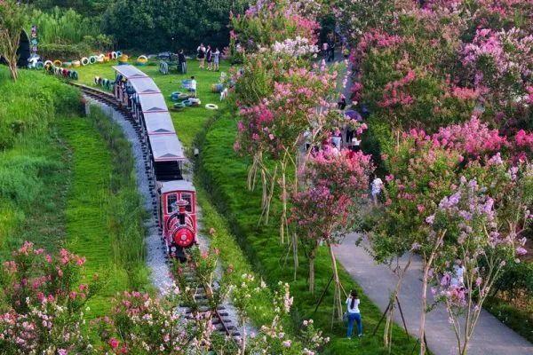 聚焦点|湖北省武汉景区免费参观当日人气值超旺!旅游景区服务项目防治抓牢 第41张
