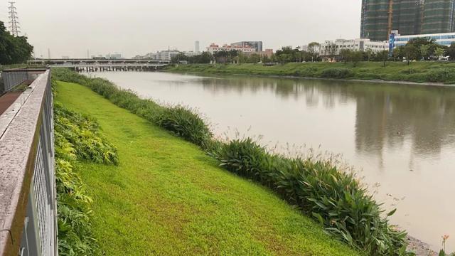 经济特区40年|深圳宝安区:产业结构升级与绿色生态整治并驾齐驱 第7张