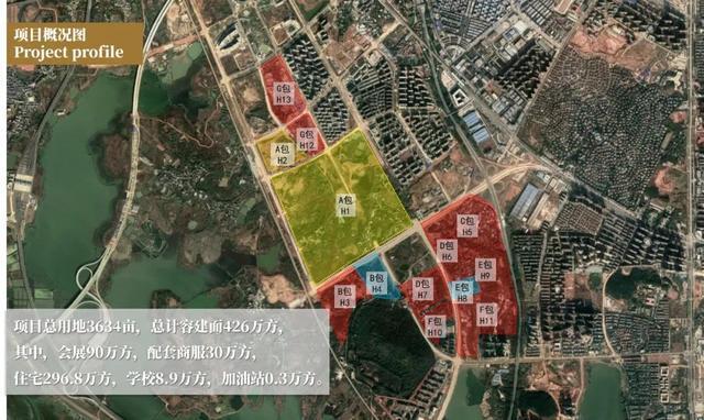 产经|武汉市2020年土地出让成交量提升1000亿元 第3张