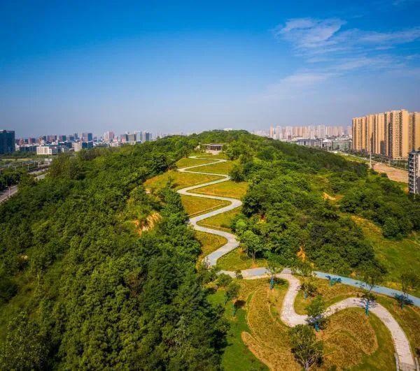 七年资金投入10亿人民币,武汉市75座损坏公路边坡拾起翠绿 第3张