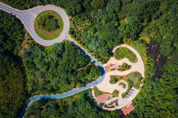 七年资金投入10亿人民币,武汉市75座损坏公路边坡拾起翠绿 第4张