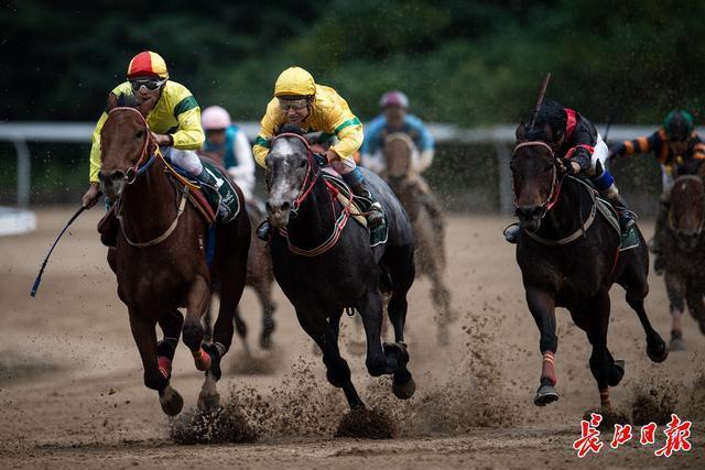武汉速度赛马公开赛拉开帷幕,首个赛程定在1949米 第1张