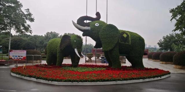 """每个房子都是打卡点!武汉的主要公园都很""""有名"""" 第7张"""