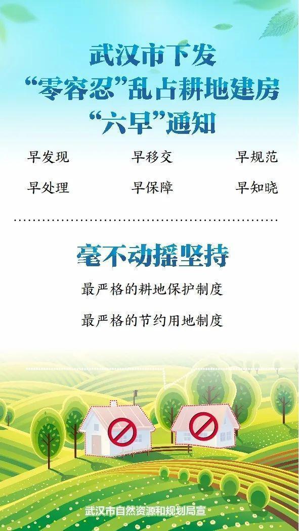 """武汉对农村建房""""零容忍"""" 第2张"""