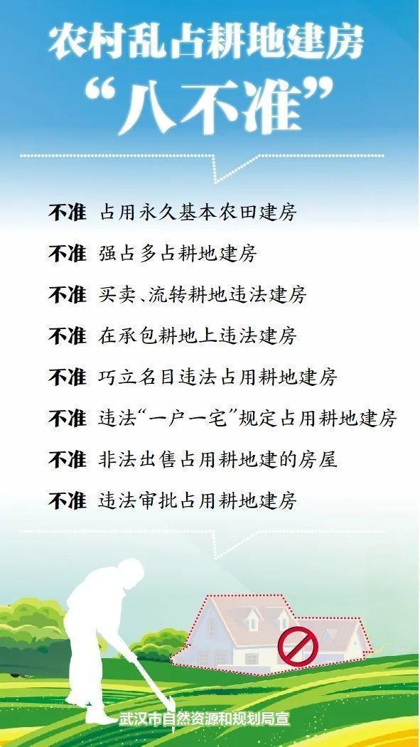 """武汉对农村建房""""零容忍"""" 第1张"""