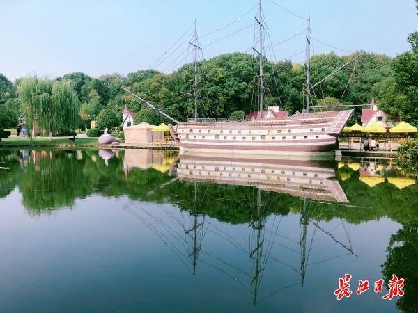 """看,湖里有一片""""森林"""",东湖""""鱼香浅底""""吸引游客驻足 第1张"""