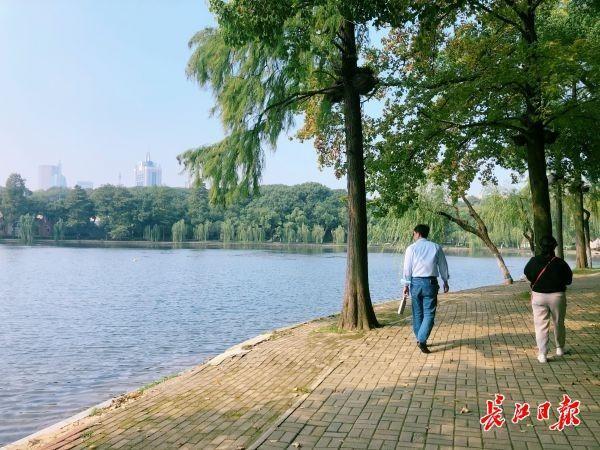"""看,湖里有一片""""森林"""",东湖""""鱼香浅底""""吸引游客驻足 第3张"""