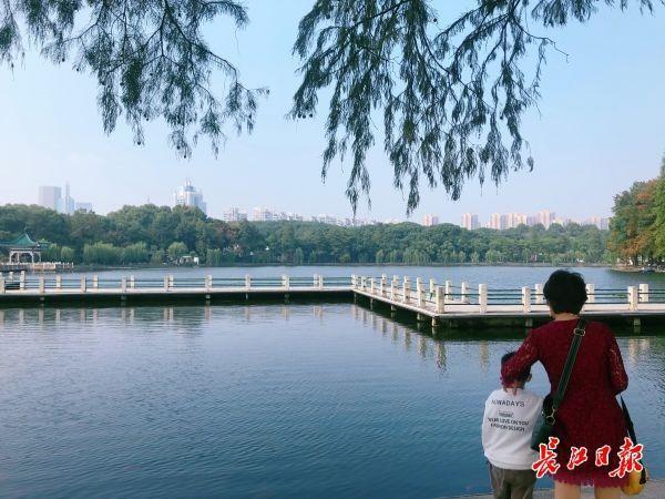 """看,湖里有一片""""森林"""",东湖""""鱼香浅底""""吸引游客驻足 第2张"""