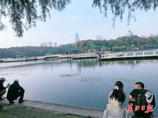 """看,湖里有一片""""森林"""",东湖""""鱼香浅底""""吸引游客驻足 第4张"""