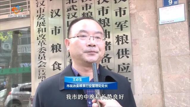民生|武汉粮食企业放开农民余粮收购,确保种粮农民持续增收 第6张