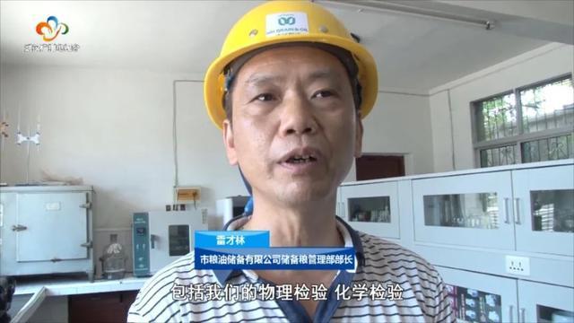 民生|武汉粮食企业放开农民余粮收购,确保种粮农民持续增收 第4张