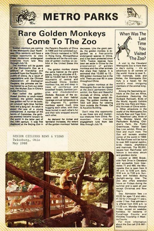 在半个城市收集了35年的儿童乐趣后,现在武汉动物园想听听你的故事 第7张