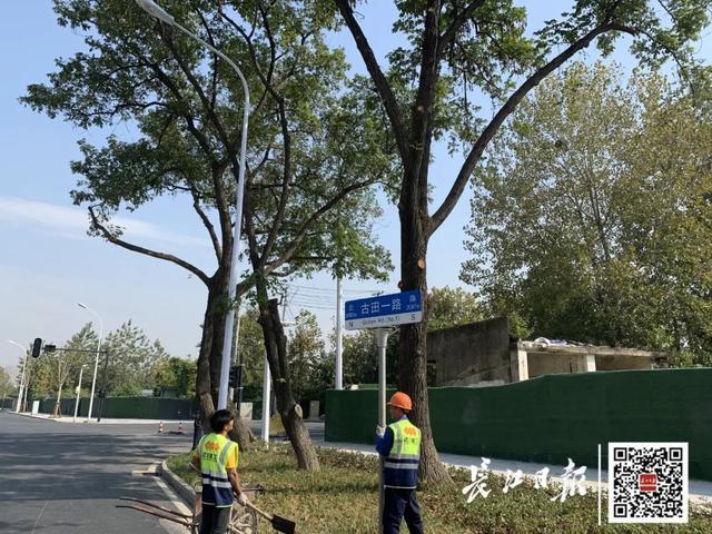 城市建设|武汉增加了沿江景观 第7张