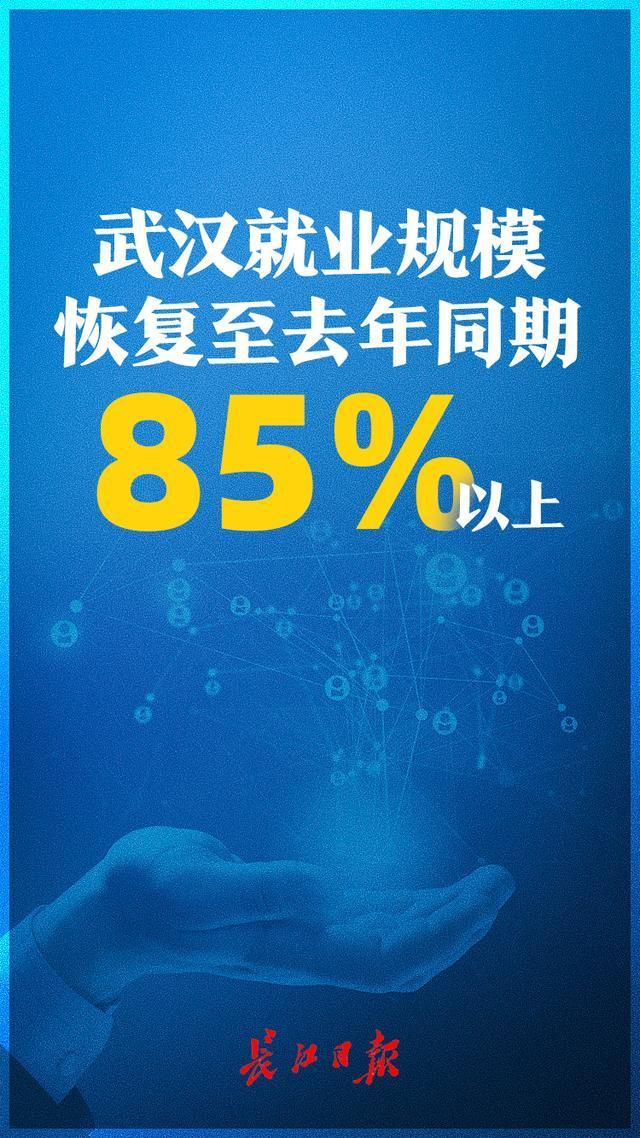 武汉的就业规模已经恢复到去年同期的85%以上 第2张