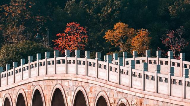 """摄影师的眼睛向你展示了各种各样的""""东湖桥"""" 第1张"""