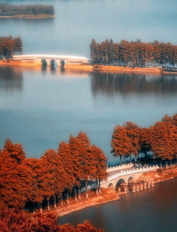 """摄影师的眼睛向你展示了各种各样的""""东湖桥"""" 第5张"""